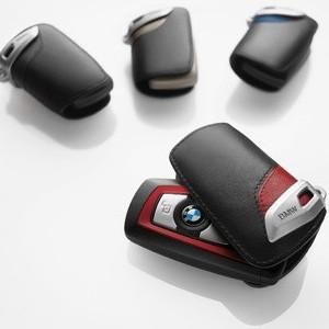 BMW Schlüsseletui Lines