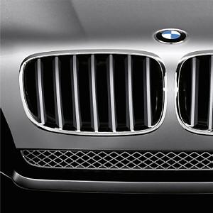 BMW Performance Frontziergitter Titan X5 E70 X6 E71