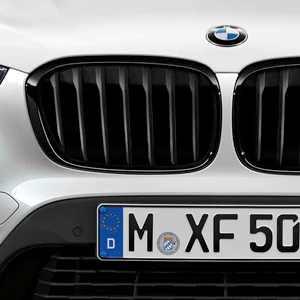 BMW M Performance Ziergitter hochglanz schwarz 2er F45 F46