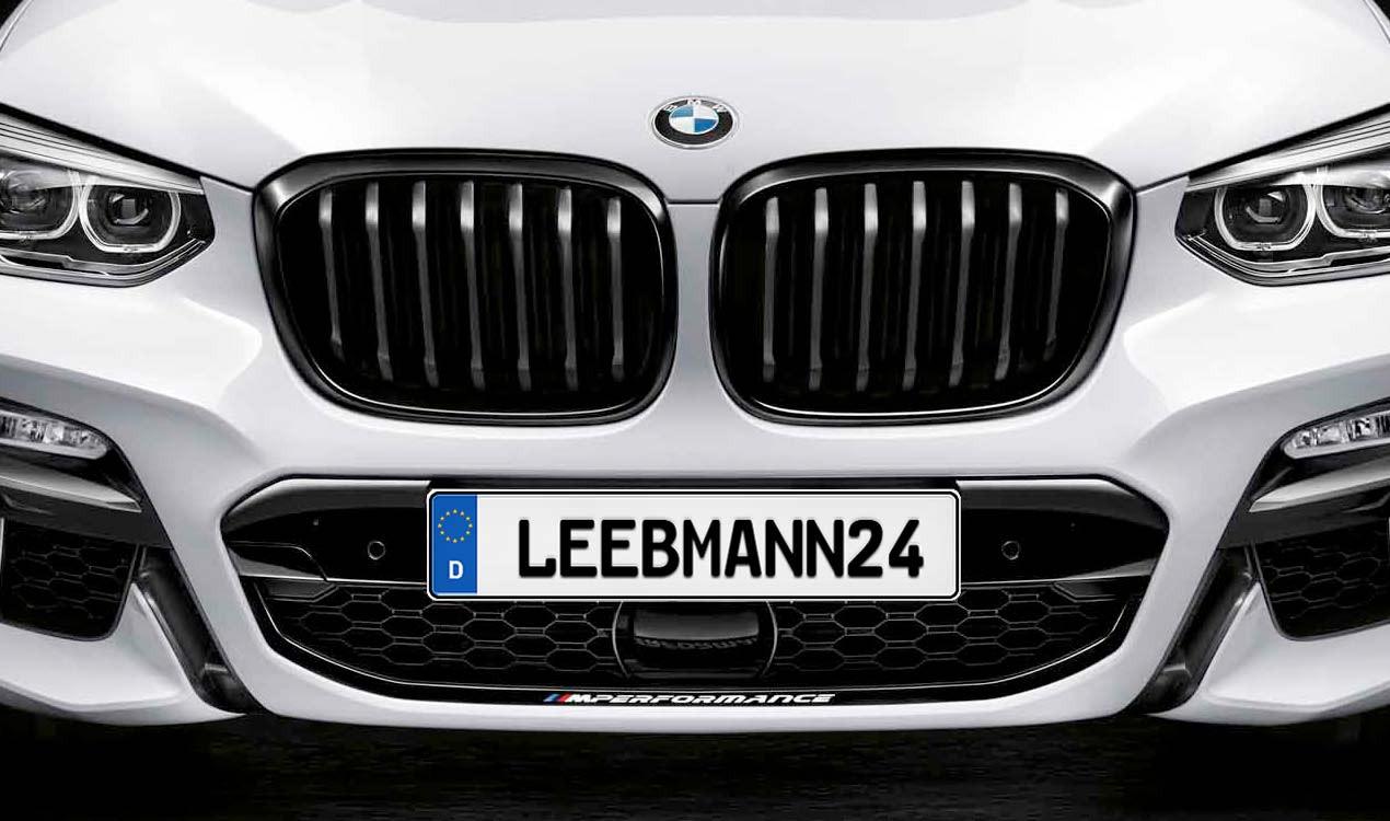Bmw M Performance Frontziergitter X3 G01 Leebmann24 De