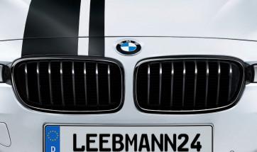 BMW M Performance Frontziergitter 3er F30 F31