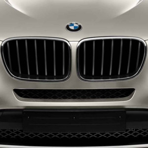 BMW Performance Frontziergitter schwarz F25