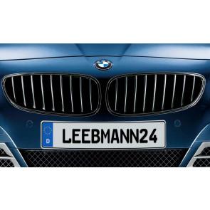 BMW M Performance Frontziergitter Z4 E89