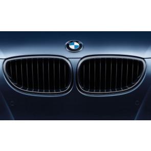 BMW M Performance Frontziergitter 5er E60 E61