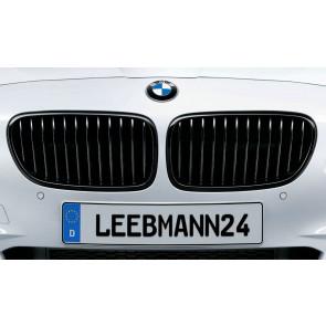 BMW M Performance Frontziergitter 5er F10 F11