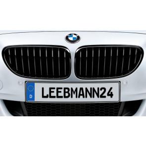 BMW M Performance Frontziergitter 6er F06 F12 F13