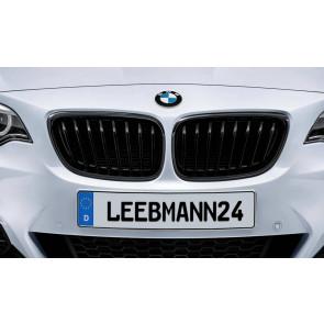 BMW M Performance Frontziergitter 2er F22 F23