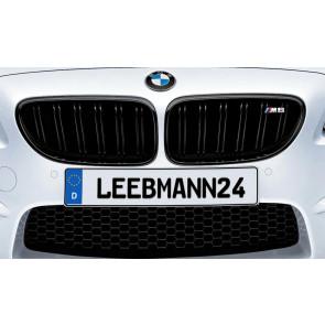 BMW M Performance Frontziergitter M6 F06 F12 F13