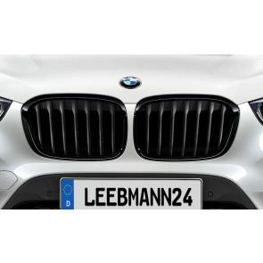 BMW M Performance Frontziergitter X1 F48