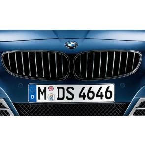 BMW Frontziergitter Schwarz  Z4 E89