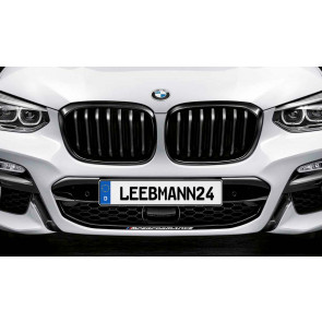 BMW M Performance Frontziergitter X3 G01