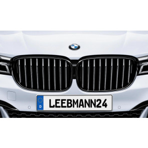 BMW M Performance Frontziergitter 7er G11 G12 (mit M Sportpaket)