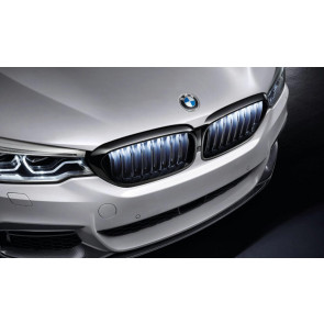 BMW M Performance Frontziergitter Iconic Glow 5er G30 G31