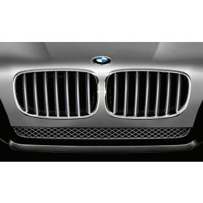BMW Frontziergitter titan X5 E70 X6 E71 E72