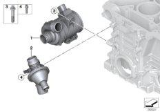 Kühlsystem-Wasserpumpe / Thermostat