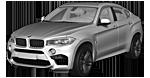 BMW X6 M F86 SAC