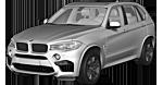 BMW X5 M F85 SAV