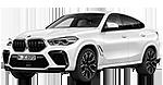 BMW X6 M F96 SAC